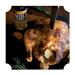 ChickenRubFood1_1080x